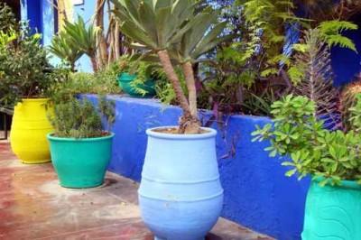 jardinerie bon-cap.fr